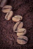 coffee bean and ground