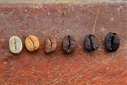 What You Need To Know About The Difference Level of Roast Coffee 👈