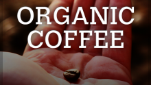 What do you need to know about organic coffee ?️‍♂️