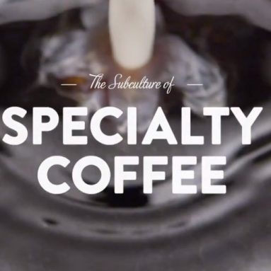 How Not to Order Coffee In Specialty Cafe